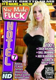 She Male Fuck Hotel #07 Part 1 DVD Cover