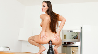 Anal Attraction #04, Scene #01