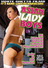 Asian Ladyboys DVD