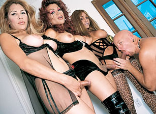 Transsexual Gang Bangers #09, Scene #02